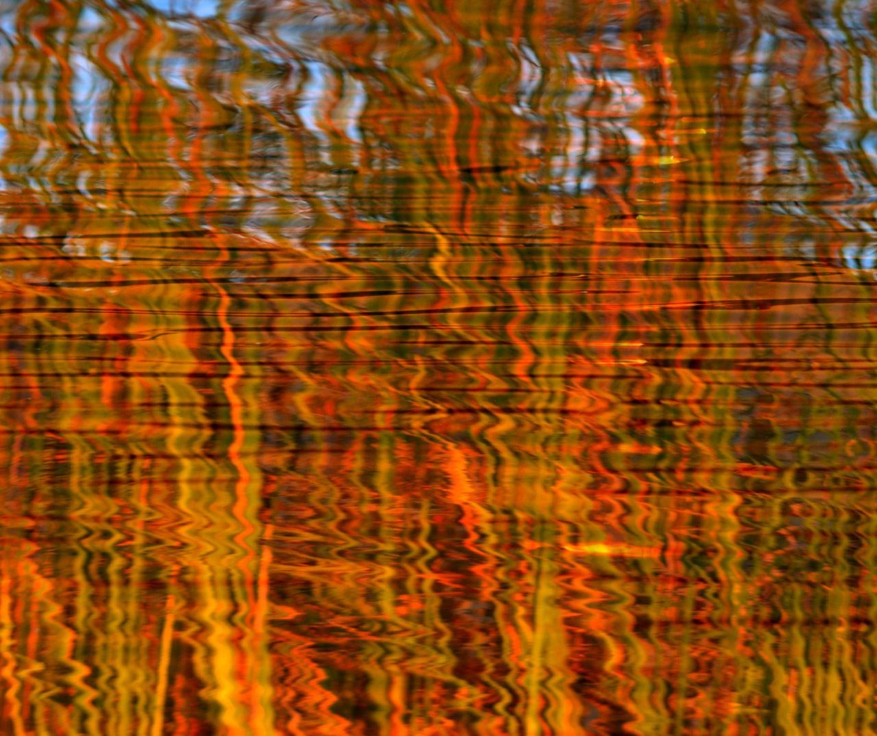 Double Exposure Abstract Grass Reflections and Sunset Reflections water reflections Ripples Tall Grasses Golden Moment