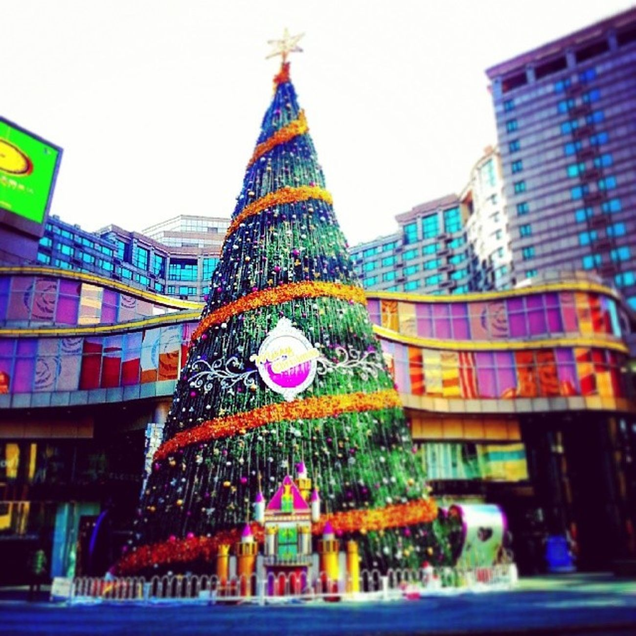 Christmas is coming Beijing Christmastree Christmas December instaplace instamood China winter iPhoto ipic