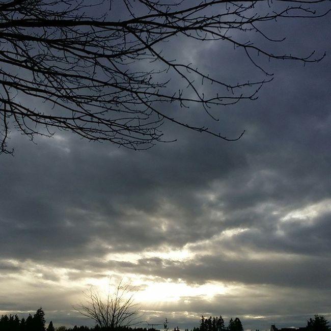 The sunshine is peeking through the clouds today & it's still beautiful! Sunshine Clouds Peeking Beautifulday Beautiful PNW Pacificnorthwest GetOutThere Travelwashington Cellphonephotography Unedited Nofilter Pictureoftheday Picoftheday Photooftheday Portorchardwashington Samsunggalaxynote3