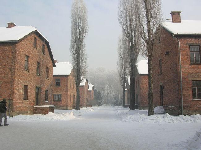Campo di prigionia di Auswchitz, gennaio 2010 Architecture Built Structure Olocausto Museum Outdoors Prison Snow Snowing Winter