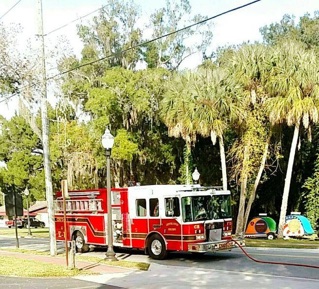 Firetruck Firedepartment Firefighter Palmtrees Lightpole Outside Outside Photography Florida Summer