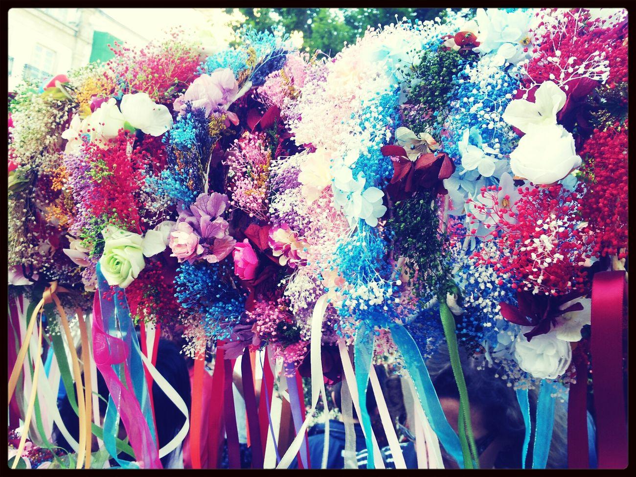 coronas de flores Arde Lucus EyeEm Meetup ARDE LUCUS Street Photography Enjoying Life
