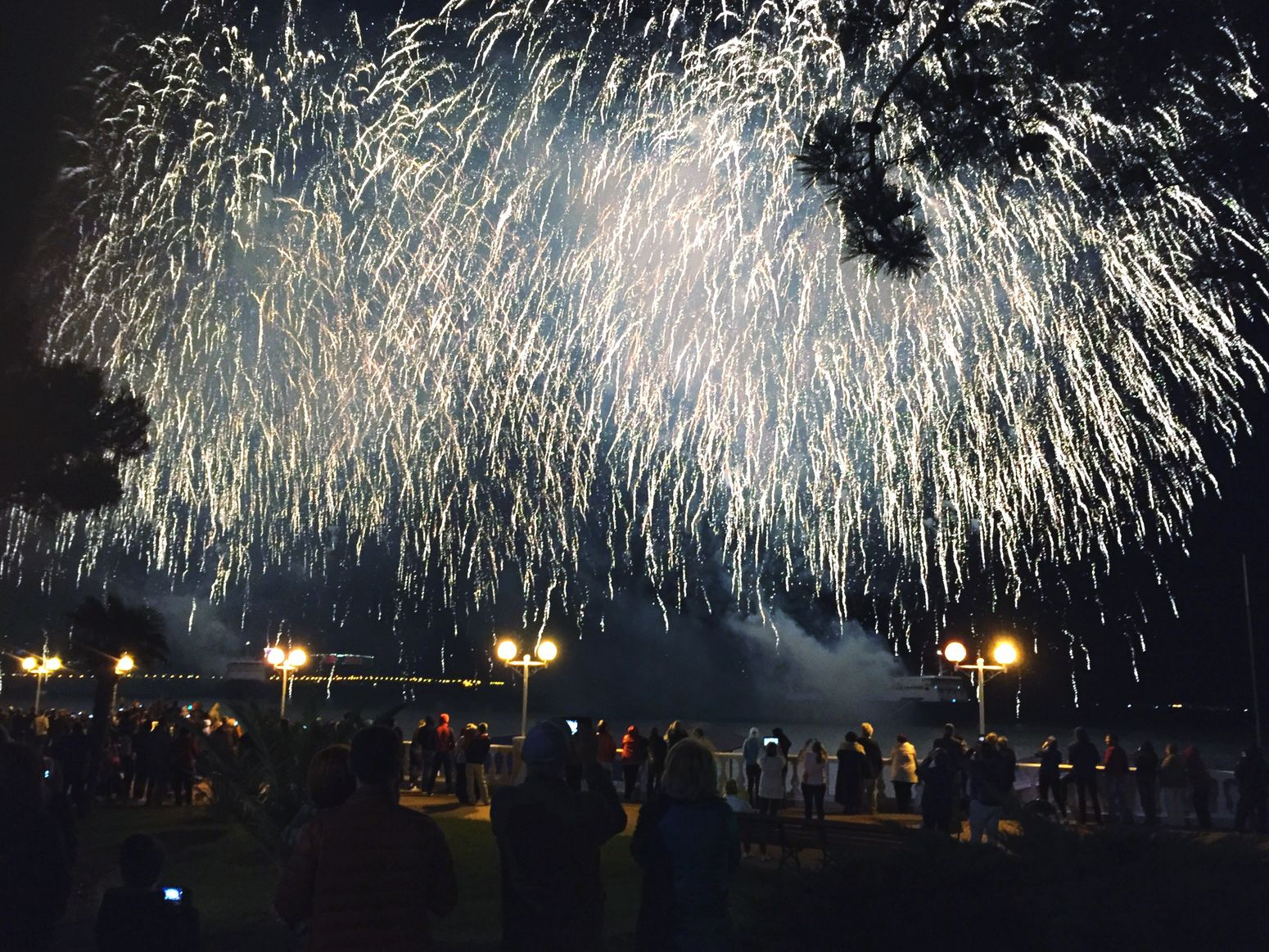 Lifestyles Firework Display Large Group Of People Firework - Man Made Object