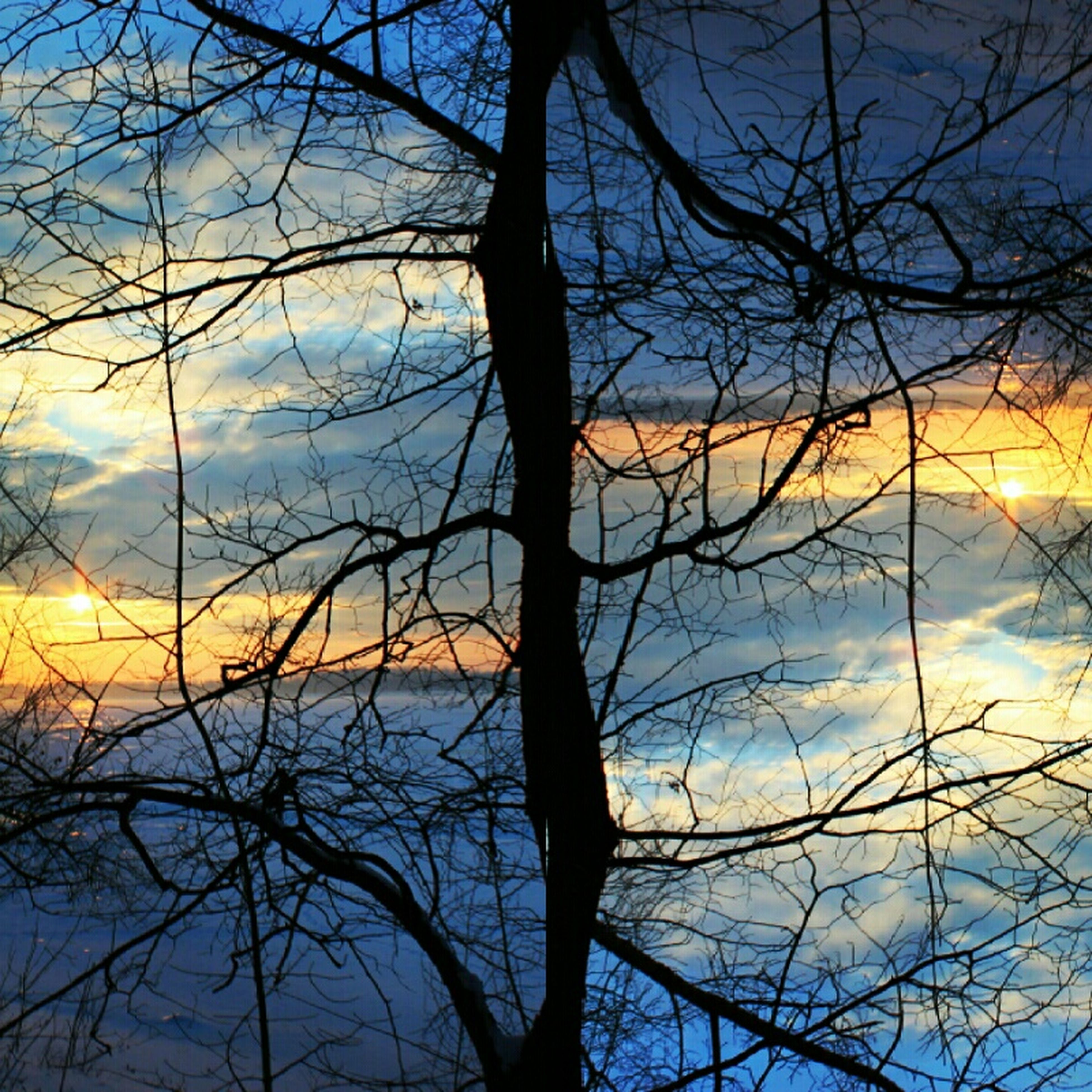 bare tree, sunset, sky, tranquility, tranquil scene, silhouette, scenics, beauty in nature, branch, nature, tree, idyllic, cloud - sky, cloud, majestic, dusk, water, outdoors, tree trunk, no people