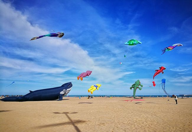 Beach Sand Sea Flying Sky Outdoors Kite - Toy Huawei P9 Photos Colours Enjoyments Kite Festival Kites Relaxing Outdoors Activity Watching Festival Of Colors Festival Animal Representation Animal Themes Tranquility Clouds And Sky Colors Activity For Kids Entertainment Beautiful No People