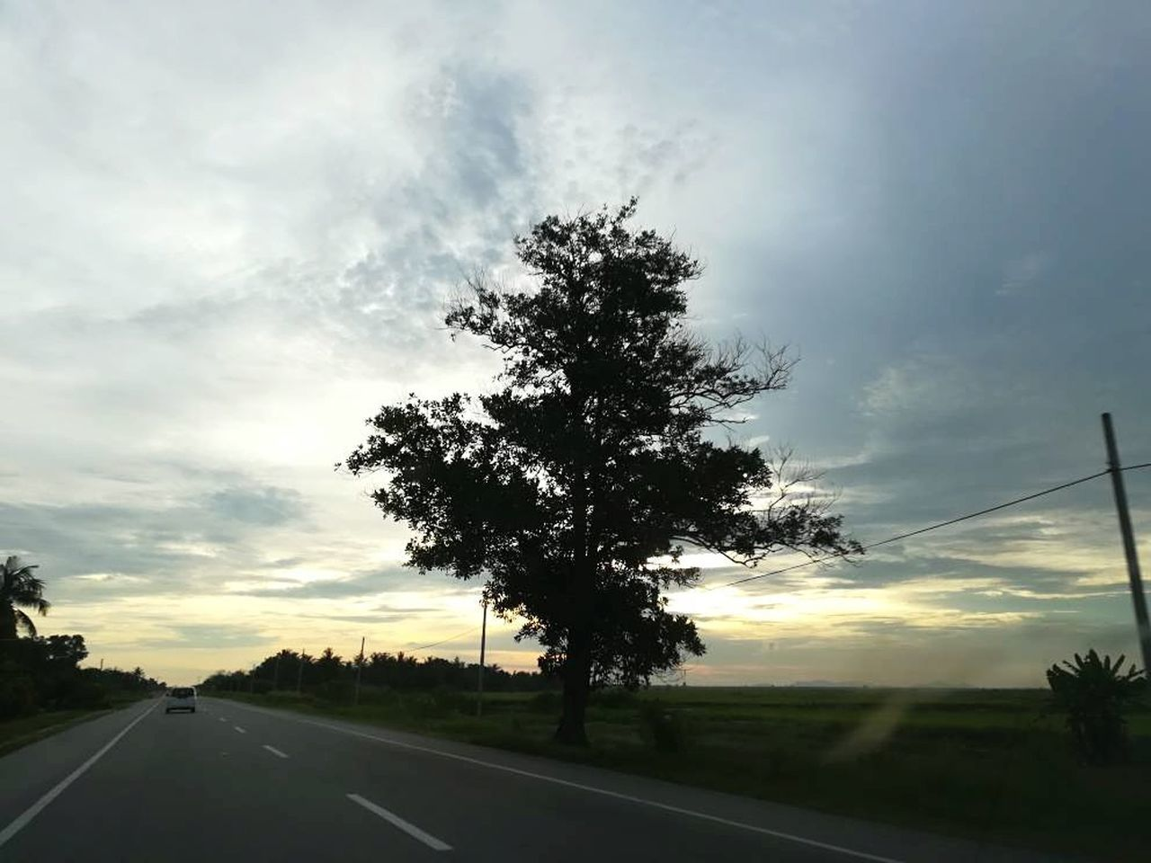 Tree Sunset Cloud - Sky Sky The Way Forward No People Outdoors Nature Road Landscape Beauty In Nature Day