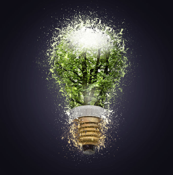 "Electric bulb lamp with tree inside shattered Black Background Close-up Day Ecology Economy Environmental Conservation Environmental Protection Explode Freshness Glass Growth If Trees Could Speak Indoors  Lightbulb Motion Nature No People Plant Shattered Spraying Studio Shot Water ""If Trees Could Speak""."