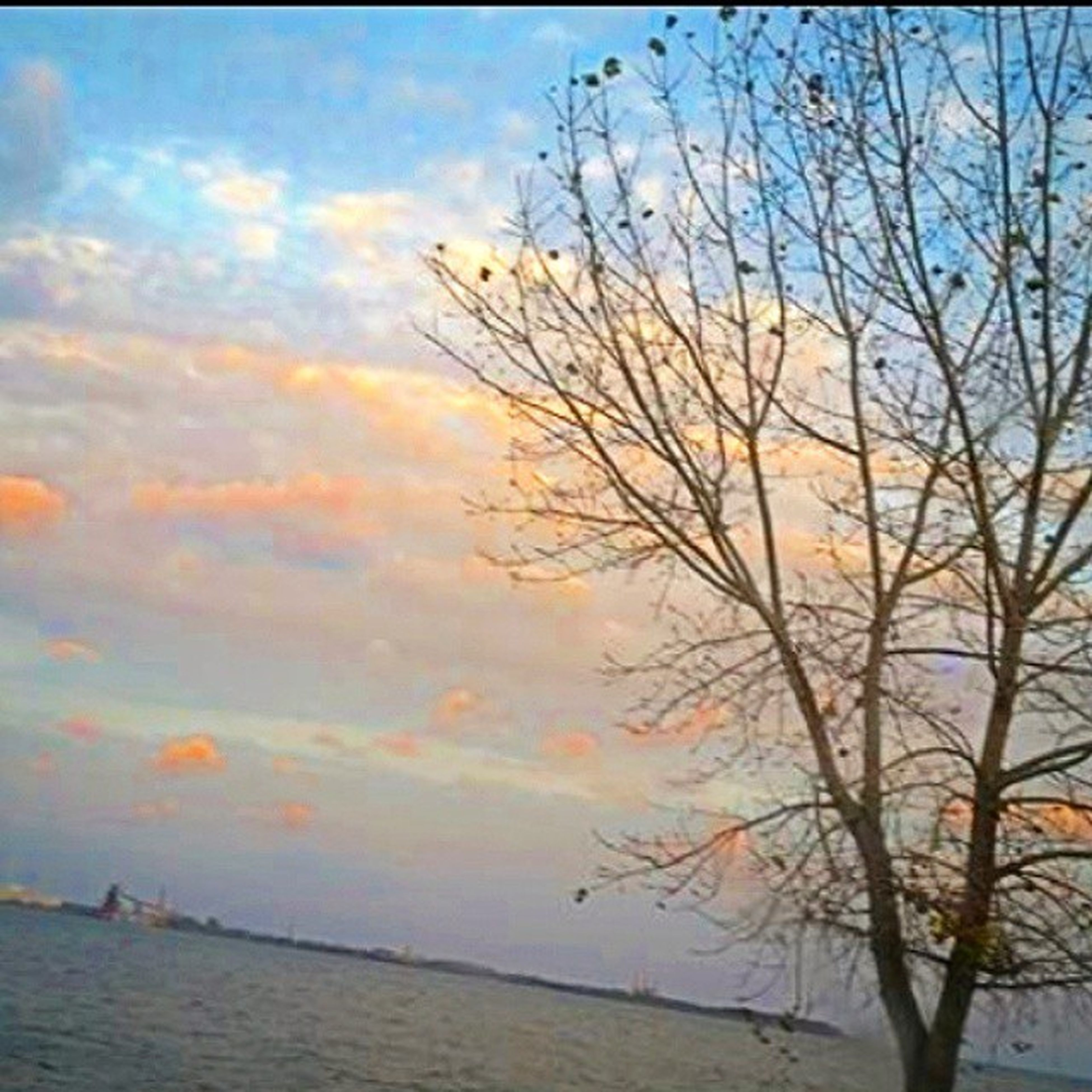 sky, tranquility, tranquil scene, scenics, water, beauty in nature, tree, sunset, cloud - sky, bare tree, nature, branch, cloud, sea, idyllic, cloudy, lake, waterfront, horizon over water, outdoors