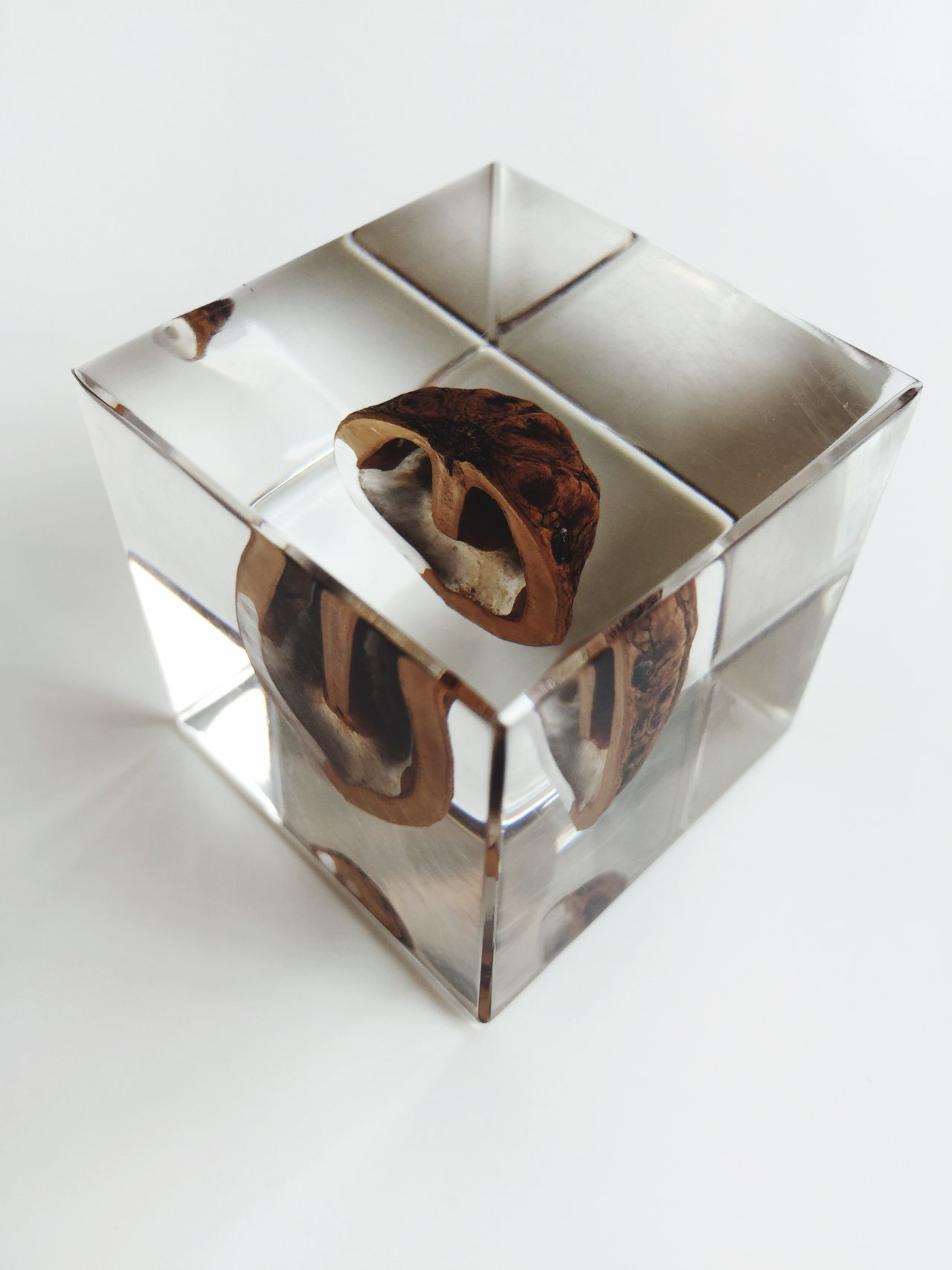 Cube with walnut;paperweight ArtWork Art Cube Art, Drawing, Creativity Art And Craft Paperweight Transparent Paperweights Acrylic From My Point Of View Transparency Simplicity White White Album Tokyo