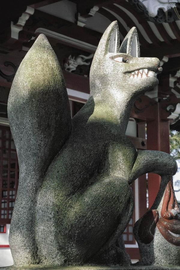 こちら今治城内の稲荷神社にいらした狛狐。以前見た手の下の丸い物が何かこれ見てはっきりした。後ろの白狐も写るように撮ってみた♬ Guardian Fox🐺 Japanese Shrine Shrine Of Japan Japanese Culture Stone Statue Texture Light And Shadow Imabari Travel Photography From My Point Of View