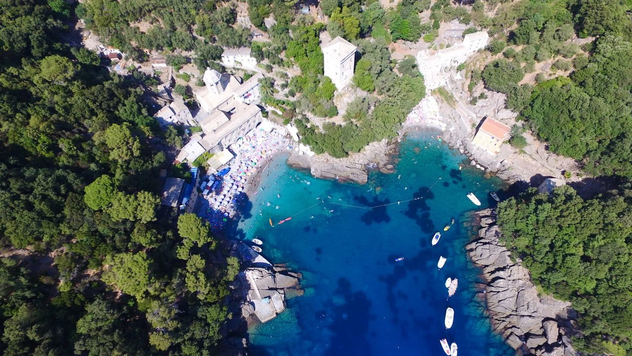 Dji DJI Phantom 3 Professional Dji Phantom Nicola Nelli Aerial Shot Aerial View Aerial Photography Nature Nature_collection Nature Photography Sea San Fruttuoso Di Camogli Drone  Dronephotography Picoftheday Picture