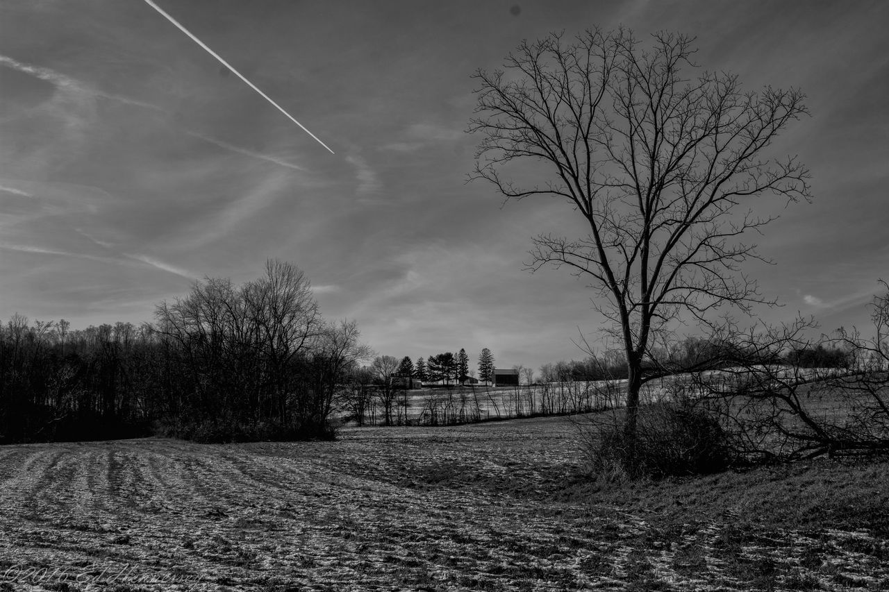 Leaving The Cold Behind Black & White Black And White Black And White Photography Black&white Blak And White Cloud - Sky Cold Cold Day Cold Days Cold Temperature Cold Weather Cold Winter ❄⛄ Farm Flying Flying South Jet Landscape Outdoor Outdoors Outdoors Photograpghy  Senic Senic View Sky Tree Trees