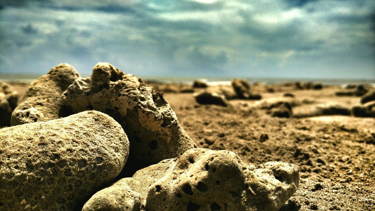 Nature Eye Em Around The World EyeEm Indonesia Photooftheday Nature Beach Worldwide_shot Naturephotography Enjoying Life Taking Photos Hanging Out Check This Out Hello World Hdr_pics HDR Hdrphotography INDONESIA Balikpapan Gadgetlicious GadgetPhotography Gadgetgrapher Gadgetgrapher_kaltim First Eyeem Photo Like4like Enjoying Life Relaxing