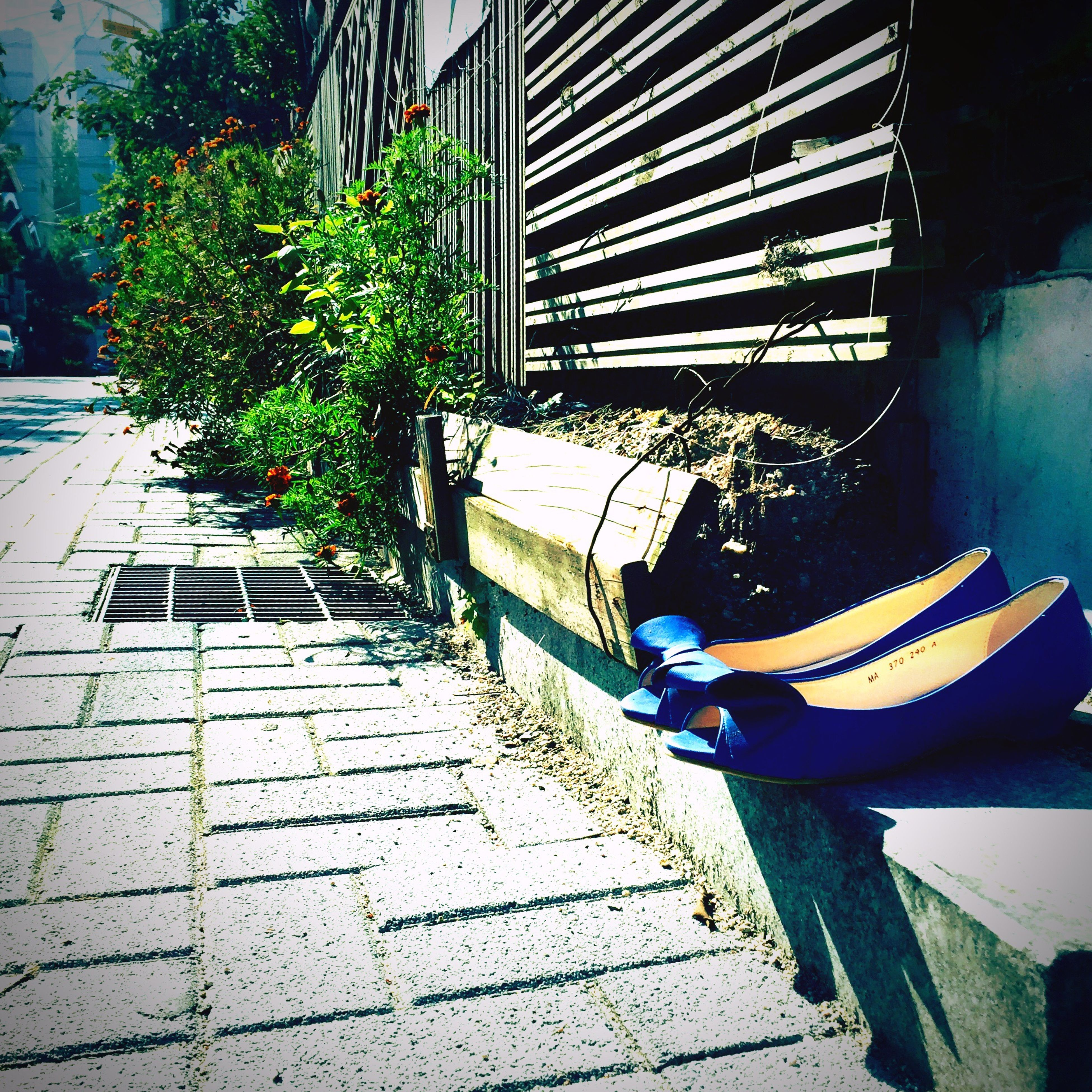 shadow, sunlight, building exterior, built structure, sidewalk, footpath, plant, low section, day, architecture, cobblestone, front or back yard, chair, outdoors, paving stone, steps, bench, tree