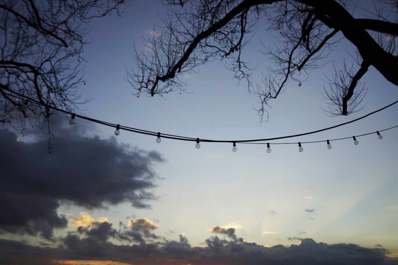 Sky Low Angle View Nature No People Silhouette Dusk Tree Cloud - Sky Sunset Tranquility Beauty In Nature Outdoors Scenics Branch Day