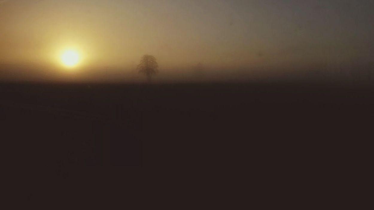 Sunrise Foggy Landscape Tranquil Scene