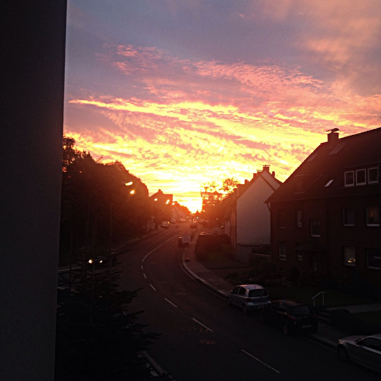 Der morgen hats insich - sonnenaufgang Sunset Sunrise Soaking Up The Sun Check This Out