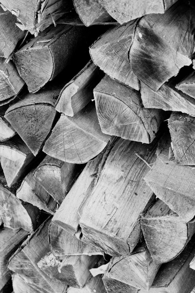 Full Frame Backgrounds Abundance Leaf Large Group Of Objects Close-up Detail Log Repetition Wood Blackandwhite Nature Forest Woodsticks Sticks Selective Focus Outdoors Firewood Fragility Arrangement Many Overhead View Forestry Industry Day Chopped