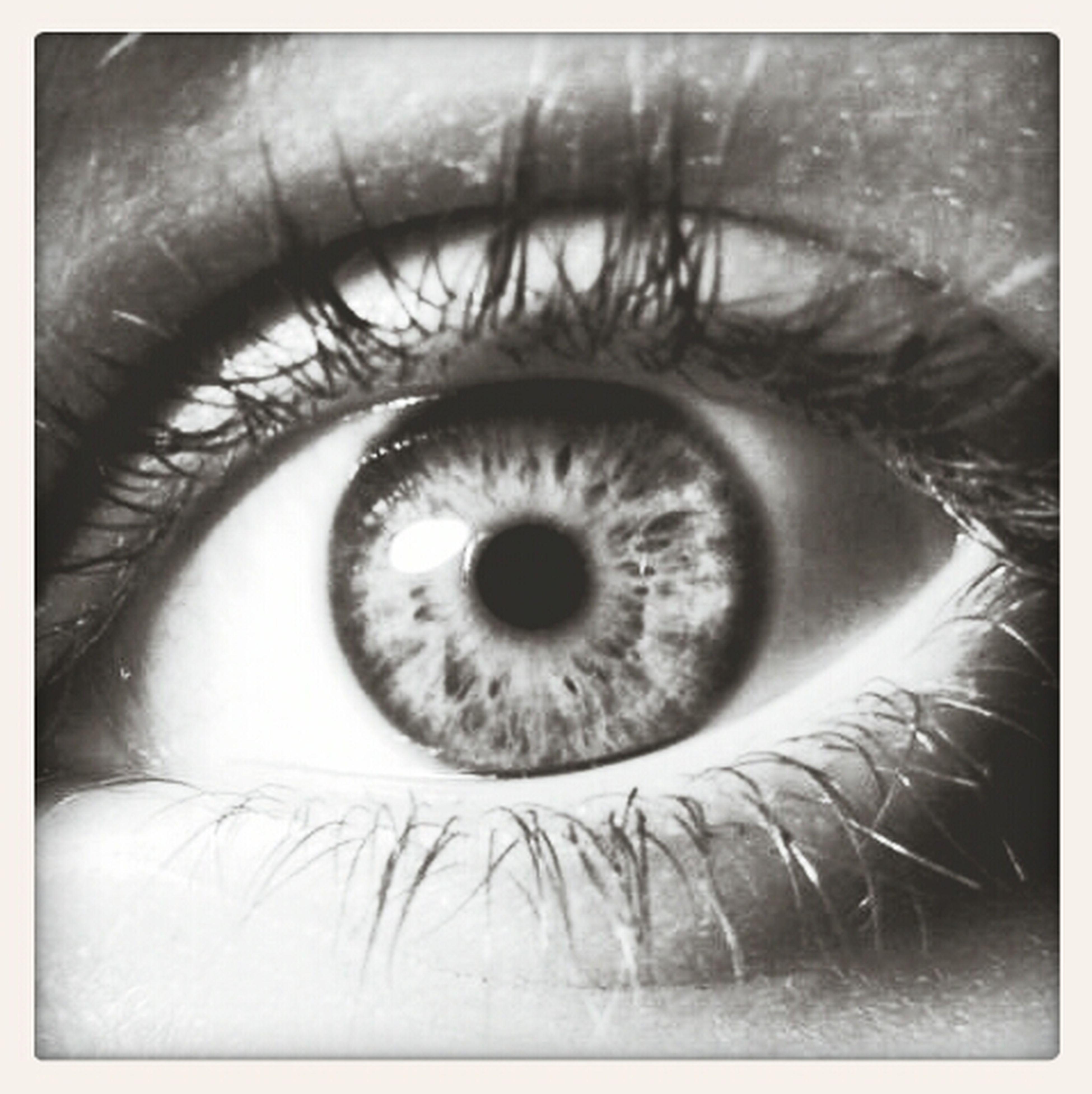 My Eye &.&