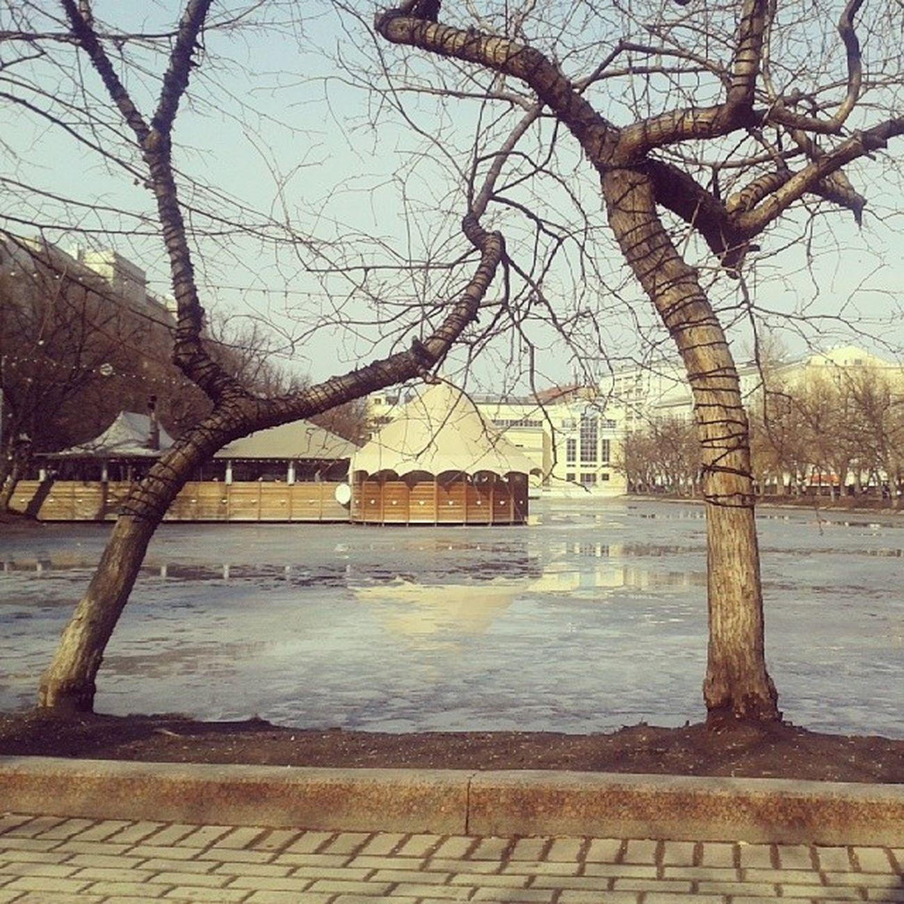 дисплей уже почти не реагирует на озябшие пальцы, но желание изо всех сил встречать весну, сидя на лавочке, сильно как никогда. чистые пруды весна Москва
