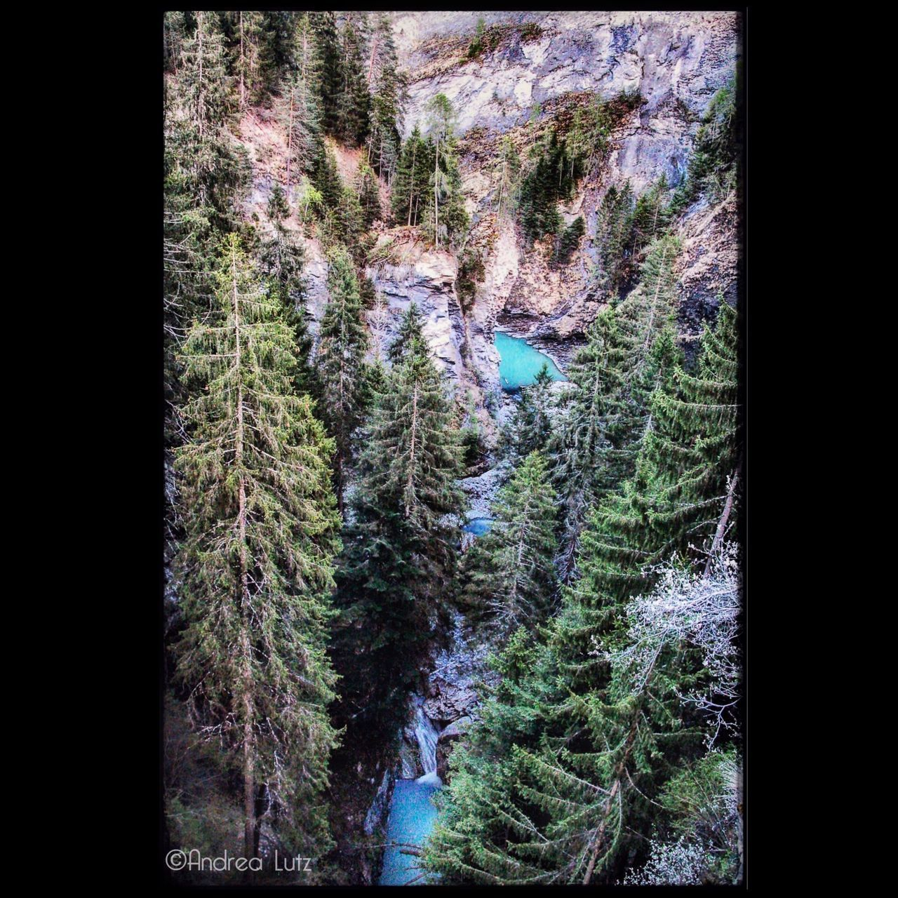 Graubünden Forest Wald Nature Stausee Wasserfall Beauty In Nature Landscape Ilovemycamera Canonphotography No People Outdoors Nature Photography Break The Mold