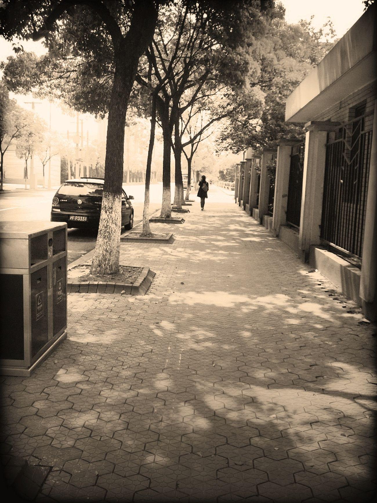 星期日的下午,一個人漫步在這種街道,體會另一種悠閒。忽然有化身為文青的錯覺。XD