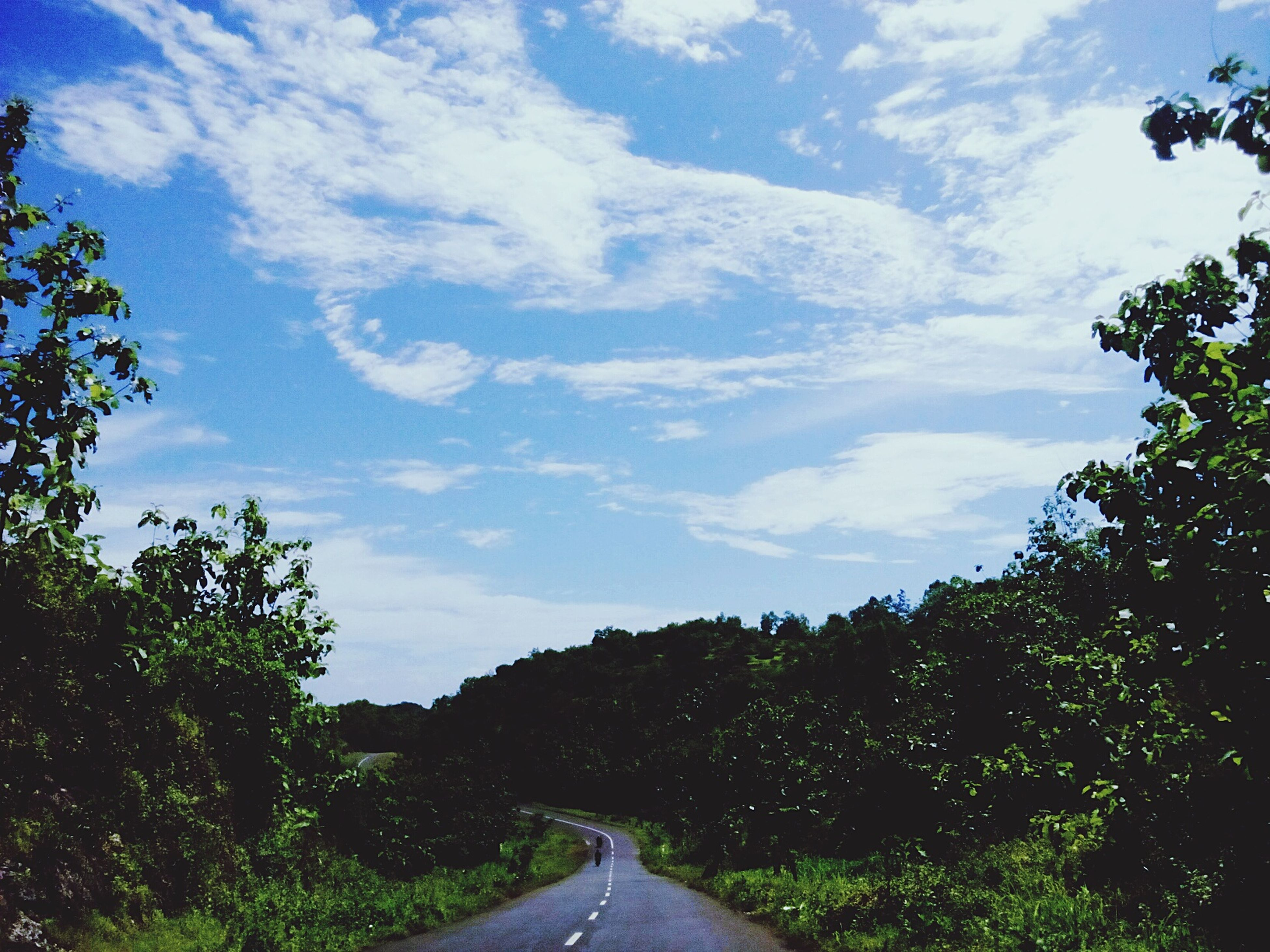 road, transportation, day, the way forward, tree, sky, cloud - sky, no people, nature, outdoors, landscape, beauty in nature