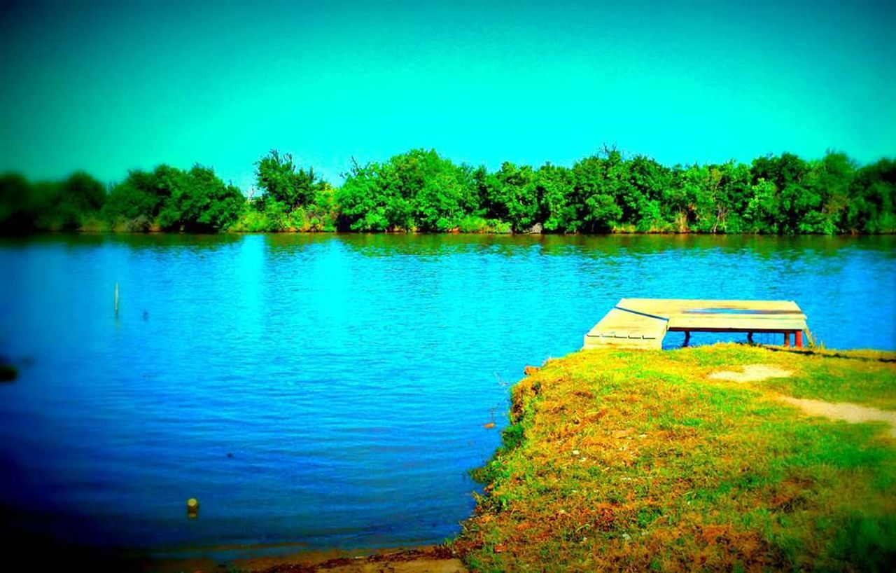 tree, lake, water, tranquility, nature, tranquil scene, beauty in nature, scenics, green color, outdoors, no people, blue, day, sky, landscape, grass