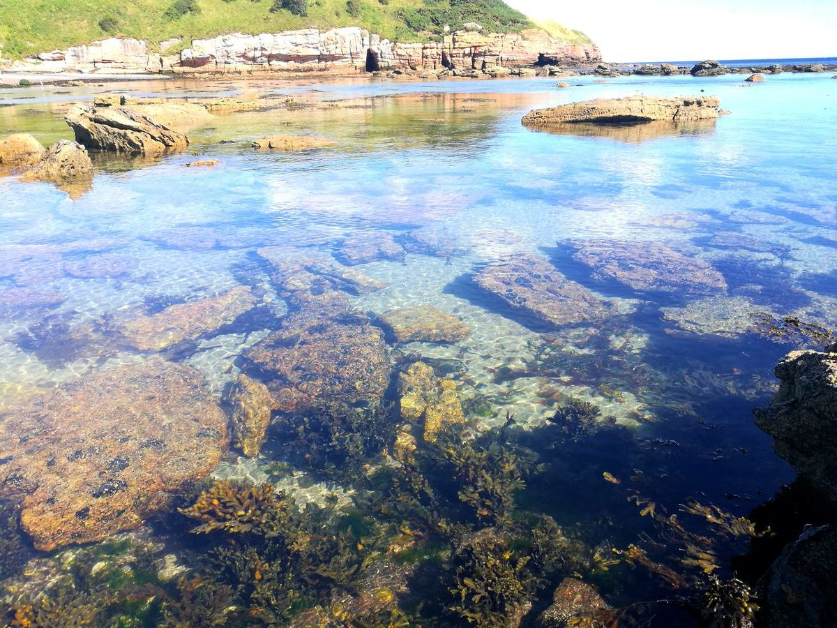 Clear Waters Water Sea Nature Outdoors Day No People Reflection Beauty In Nature Beach Blue Sky Huawei P9 Leica Rocks And Water Rockpool Beneath The Water Tranquility Fresh on Market 2017