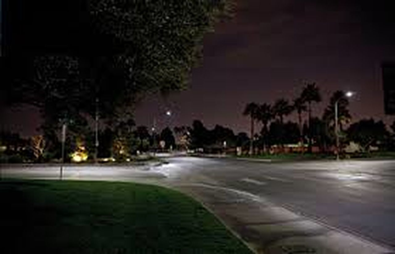 night, illuminated, outdoors, tree, street, building exterior, road, street light, city, water, no people, built structure, architecture, sky, palm tree, nature