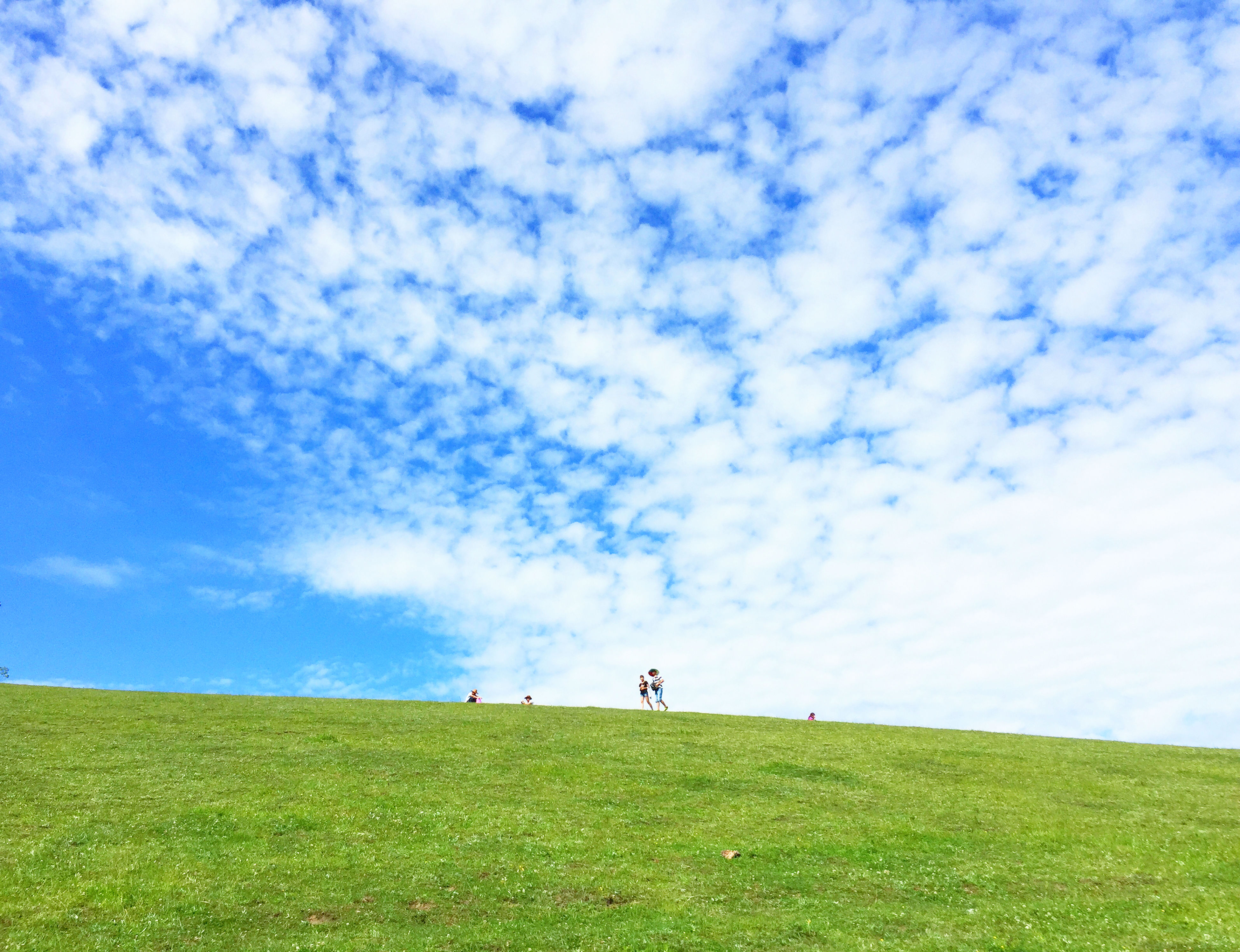 grass, sky, grassy, field, cloud - sky, landscape, green color, tranquility, tranquil scene, cloud, nature, beauty in nature, scenics, cloudy, leisure activity, day, blue, green, grassland