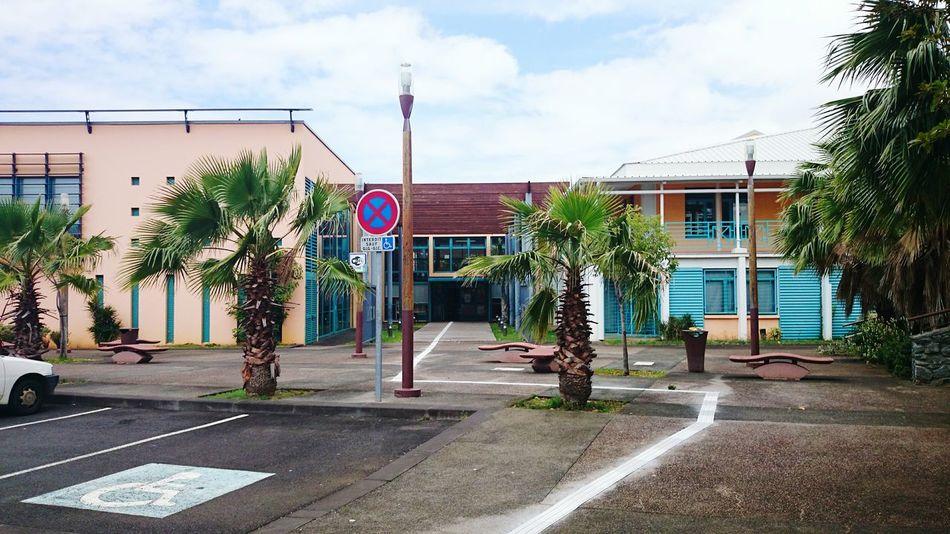 OpenEdit Library Reunion Island Ste Marie Xperia Z2 Palm Trees Beatuiful Btsbatiment Dont Signe Street
