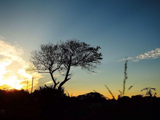 お疲れ様。 NikonP330 夕暮れ時 Twilight Afterglow Sunset おつかれさま