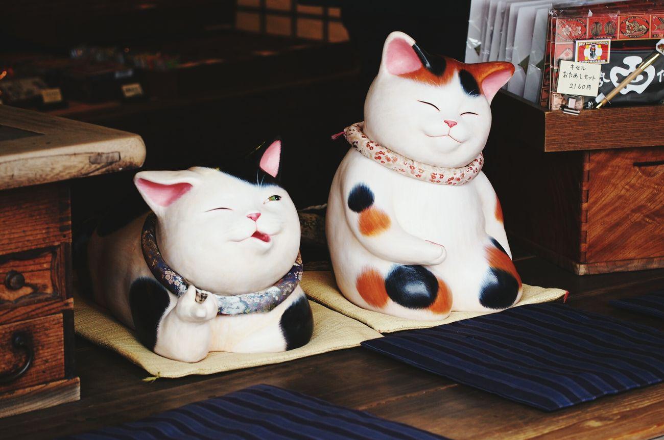 招き猫 Cats 🐱 伊勢神宮 Japan Photography おかげ横丁 EyeEm Gallery Japan EyeEm