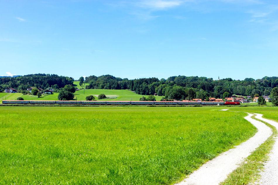 Train Grass Green Color Nature Scenics Sky Train