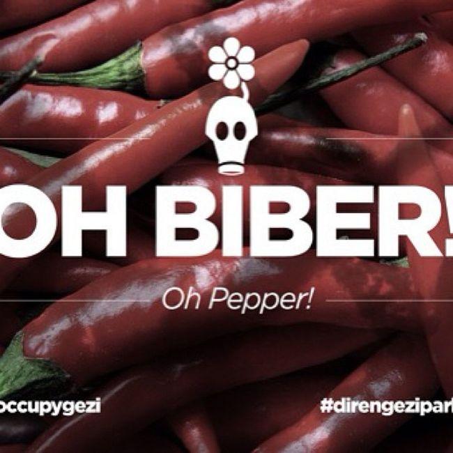 Oh Biber Pepper Bibergazi Occupygezi direngezi direngeziparki art istanbul taksim