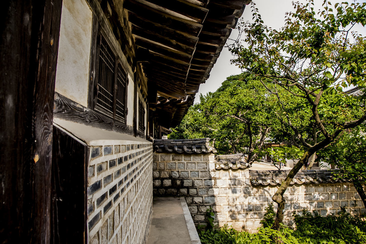 architecture, built structure, building exterior, no people, day, tree, outdoors, roof