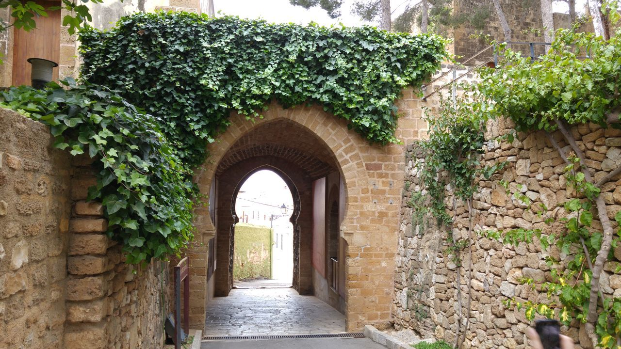 Arch Architecture Archway Building Exterior Built Structure Creeper Creeper Plant Day Denia Entrance Entryway Green Color Growth History House Ivy Leaf Narrow No People Old Ruin Outdoors Plant Stone Material The Past Adapted To The City