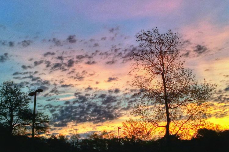 Colors of my favorite mornings. Silhouette Sunrise Clouds And Sky Landscape