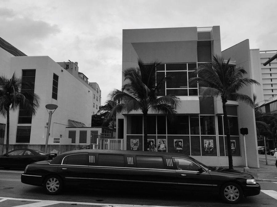 Miami Streetphotography Artdeco Architecture Palm Trees Blackandwhite Showcase: February Big Car