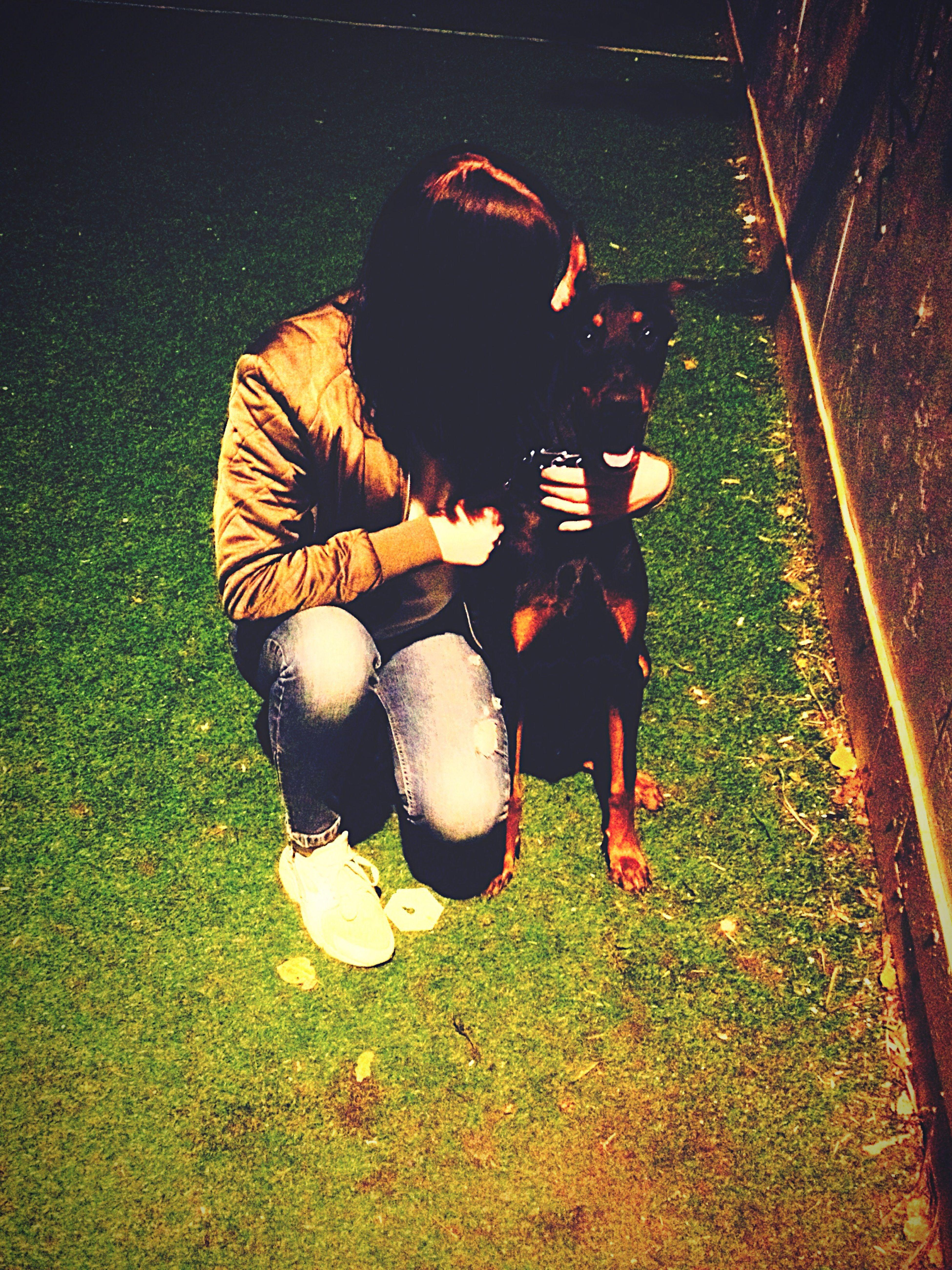 Мой милый пёс Baddy First Eyeem Photo