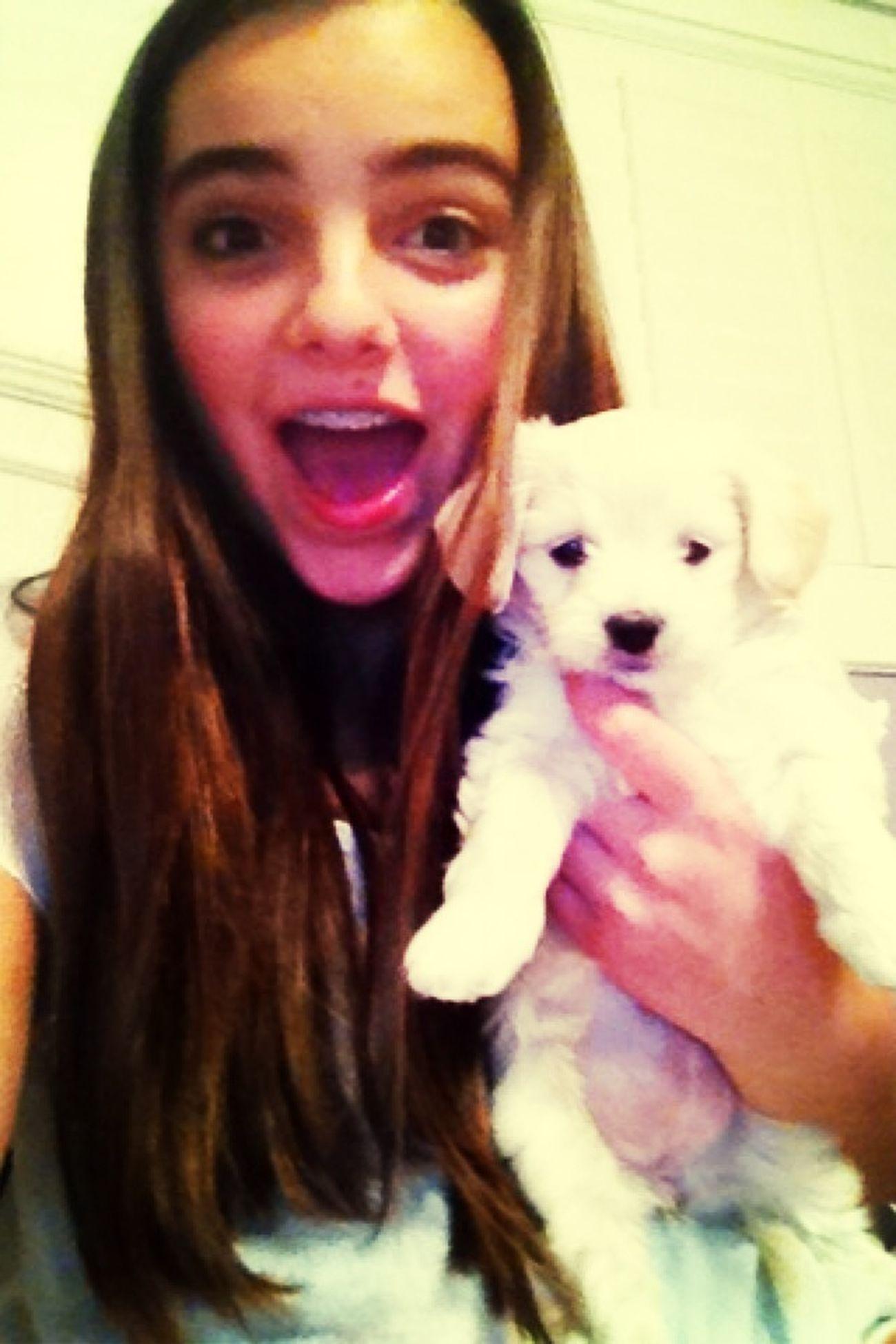 New Puppy ❤
