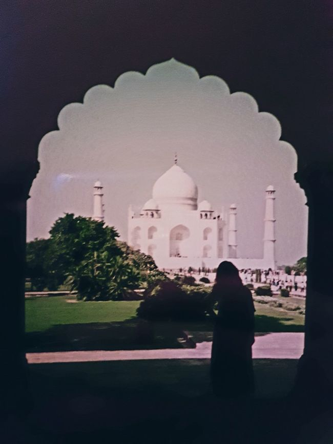 Architecture Building Exterior Dome Outdoors Wonderful View Wonderful Place Wonders Of The World Me Sari Vintage Photo Taj Mahal When Two Different Worlds Collide Cultures Adults Only One Person Standing India Taj Mahal, Agra Taj Mahal Taj Mahal Peeping Serene