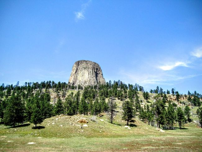 Devils tower Tree Scenics Tranquil Scene Tranquility Blue Sky Landscape Beauty In Nature Outdoors Mountain Wyoming USA Wyoming Landscape Wyoming Tree Tranquil Scene Sky Tranquility Blue Scenics Growth Landscape Beauty In Nature Cloud Nature Non-urban Scene