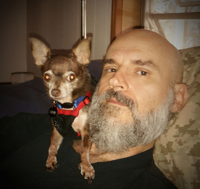 My Dogs Are Cooler Than Your Kids Chihuahuas<3 Chihuahua Lovers Chihuahua My Life ❤ My Best Friend Happy Dogs Selfie ✌ Sitting Pretty Casa De Albatross Partners In Crime Odie Cu-Jose Looking At Camera Pampered Pets