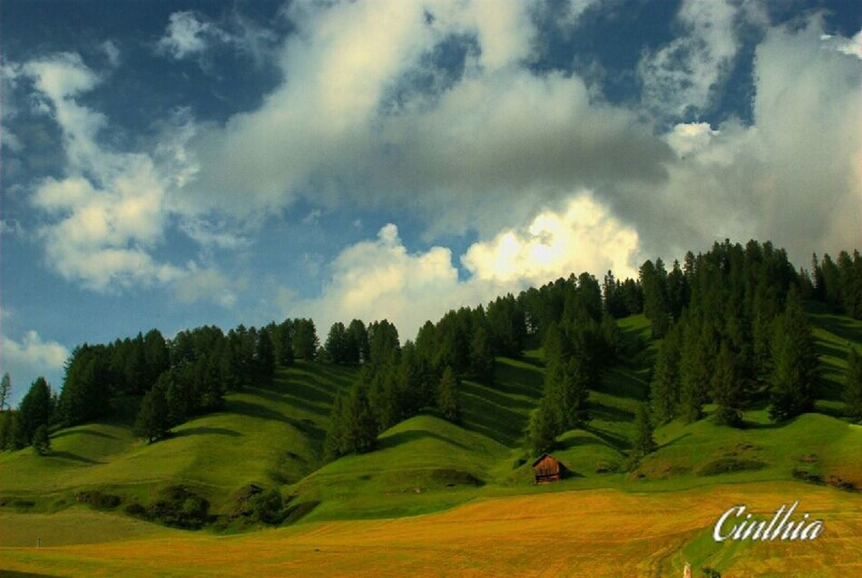 Lovely mountains Mountains Landscape Green Trees Enjoying Life Photography Italianeography Eye4photography  Hanging Out