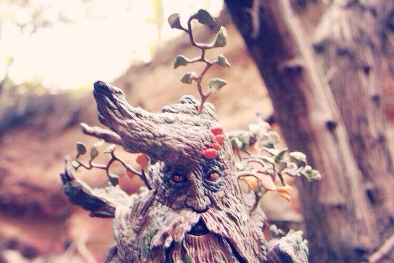 Treebeard The Shepherd Of The Trees