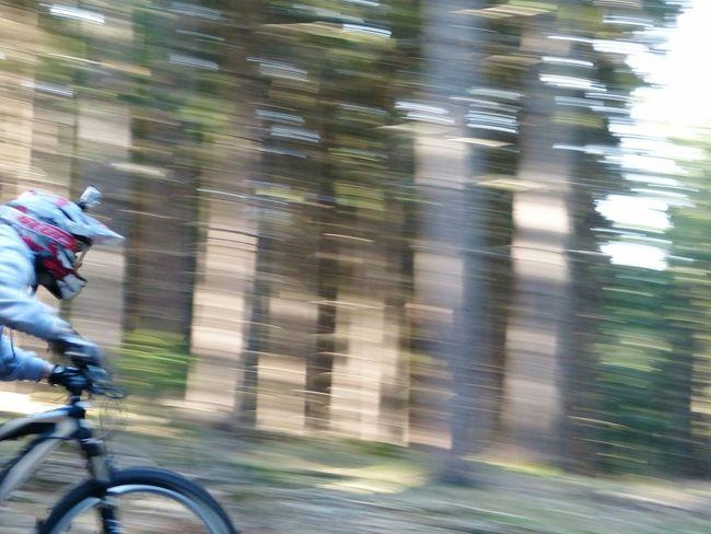 Racing Bike Downhill/ Freeride Freerider Trekbikes TrekBike Trekbicycles Downhillmtb Downhillmountainbiking Transportation Tabarz Gotha