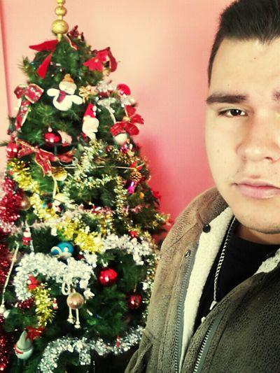 Taking Photos My Cristhmas Tree MerryChristmas