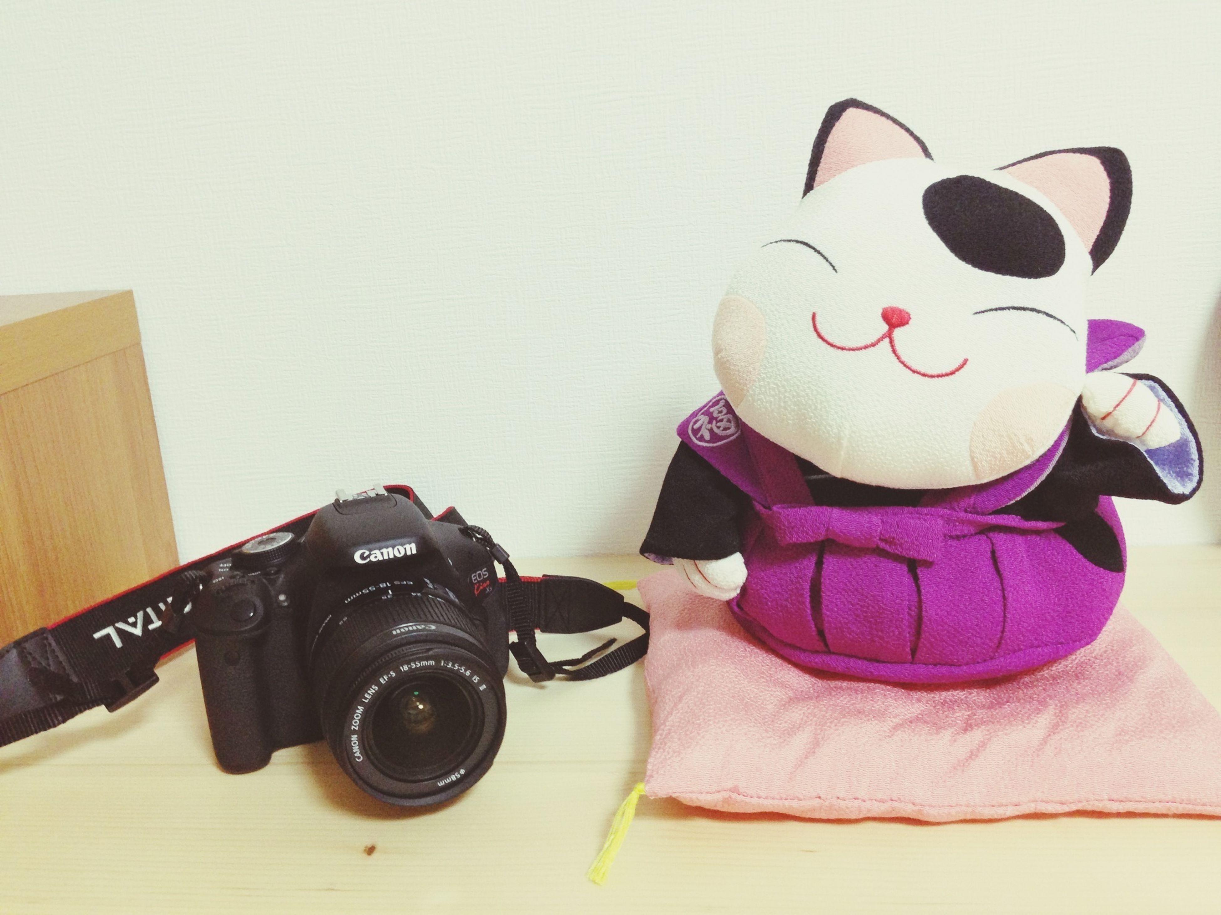 ついに一眼レフ購入!(((o(*゚▽゚*)o)))これからどんどん写真楽しみます(*^_^*)